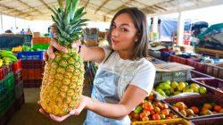 Porndoe Premium – Follada y metida de dedos a una Colombiana aceitosa – Lorena Castro